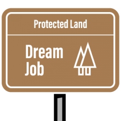 Land that dream job
